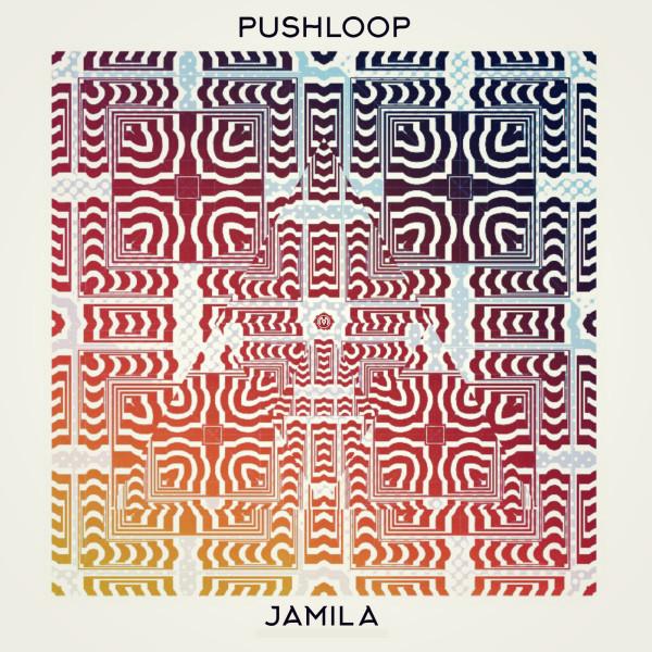 Pushloop Artwork