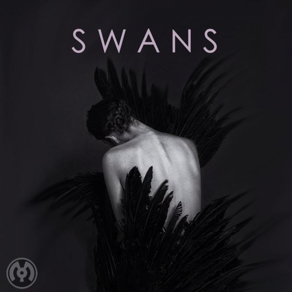 SWANS Artwork