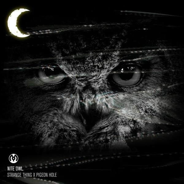 Nite Owl Artwork